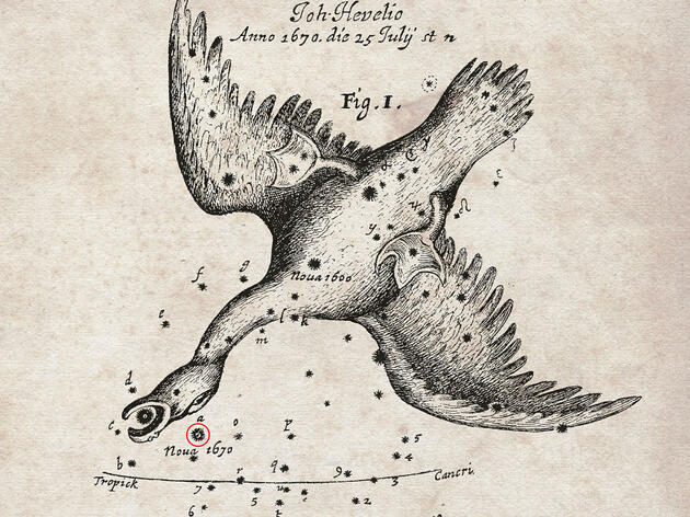 Science (and Swans) in the Stars