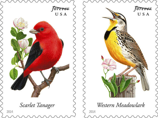 10 New U.S. Postal Service Stamps Feature Songbirds