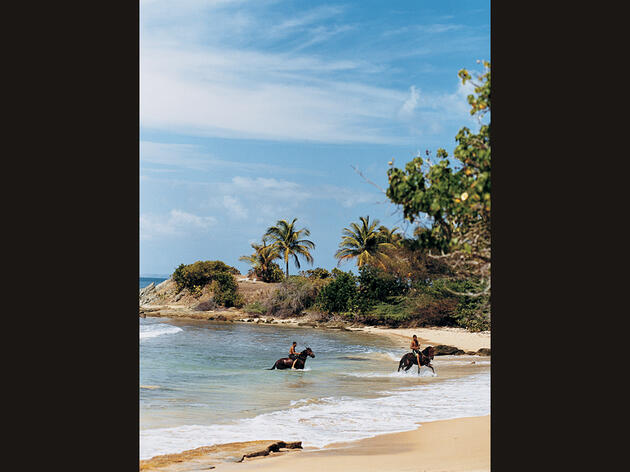 Beauty and the Bomb: Puerto Rico's Vieques