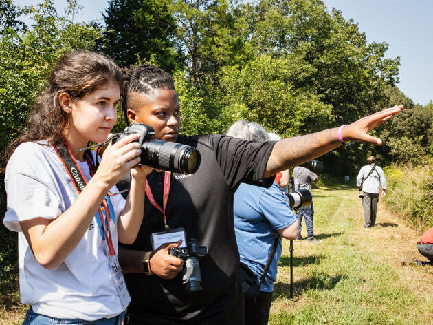 Top Audubon Wins for Birds in 2019: Partnerships