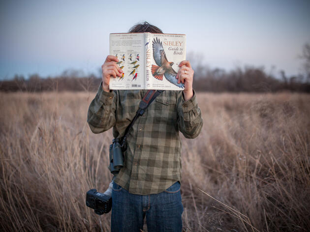 Rule #39: How to Tell Friends and Family That You're a Birder