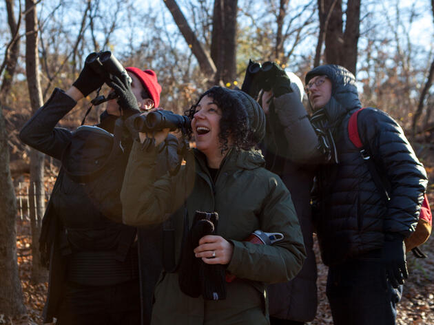About the Great Backyard Bird Count