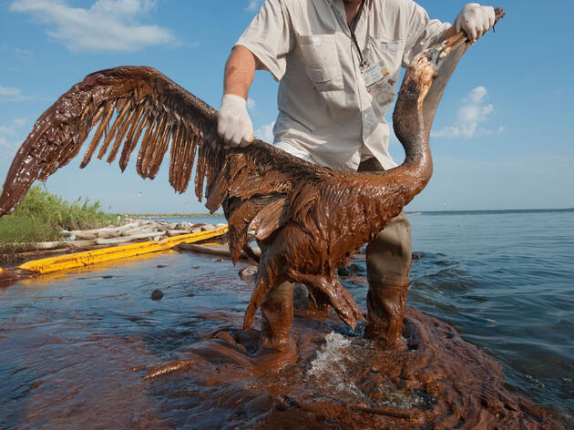 Oil Spill Cleanups Are Dangerously Deceptive