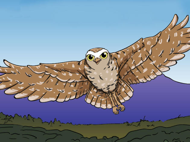 Write Your Own Owl Prowl