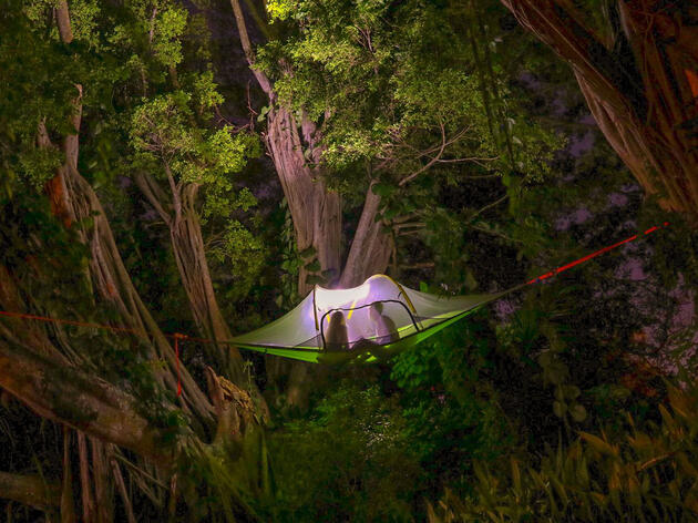 Want to Spice Up Your Birding Life? Go Camping