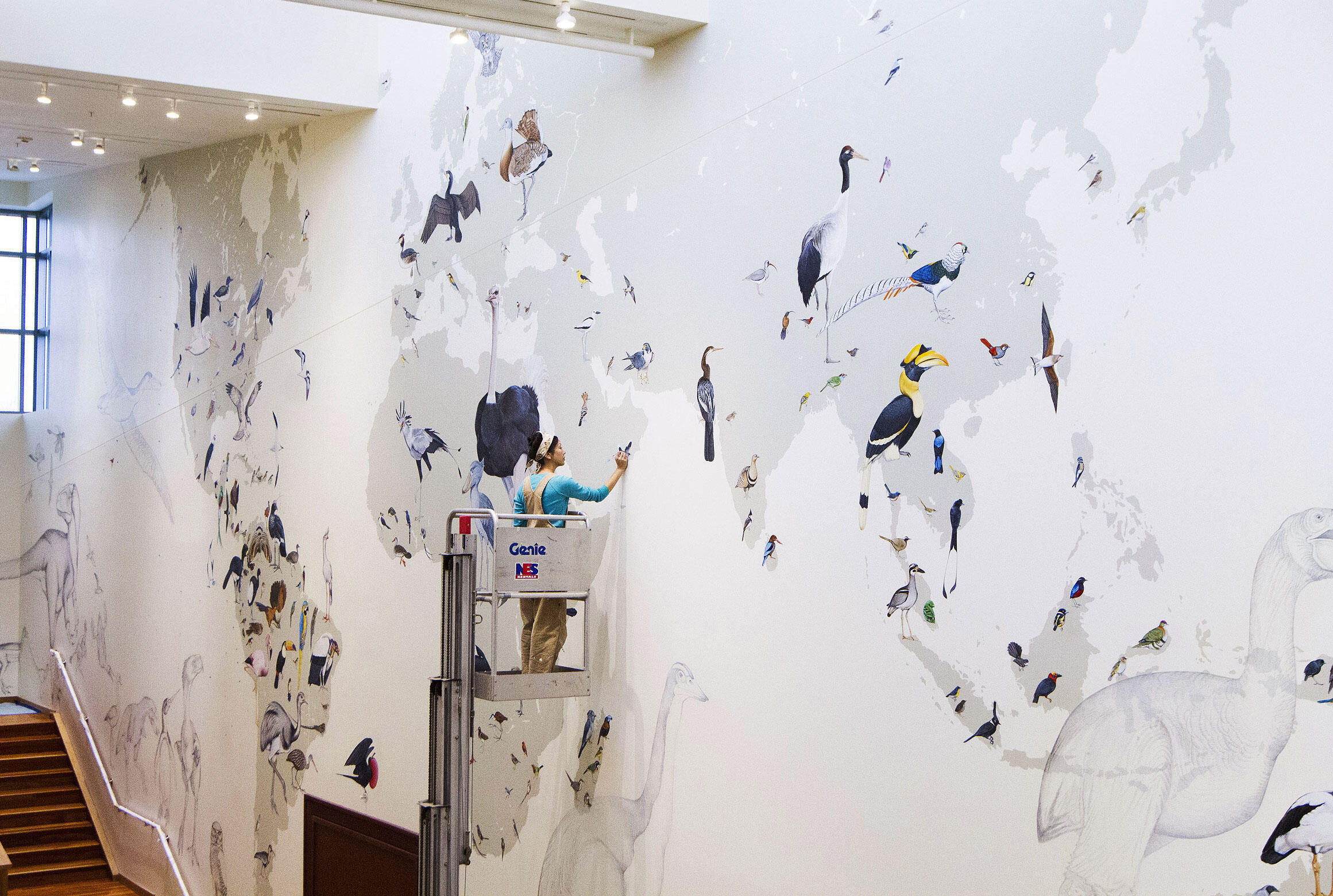 Cornell 39 s enormous new mural depicts every living bird for Easy mural painting