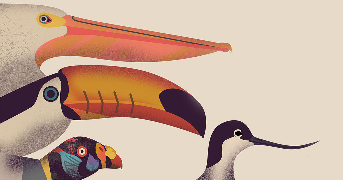 Seven Birdy Books for Kids (and the Kid Inside of You) | Audubon